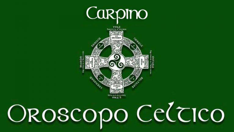 carpino-oroscopo-celtico