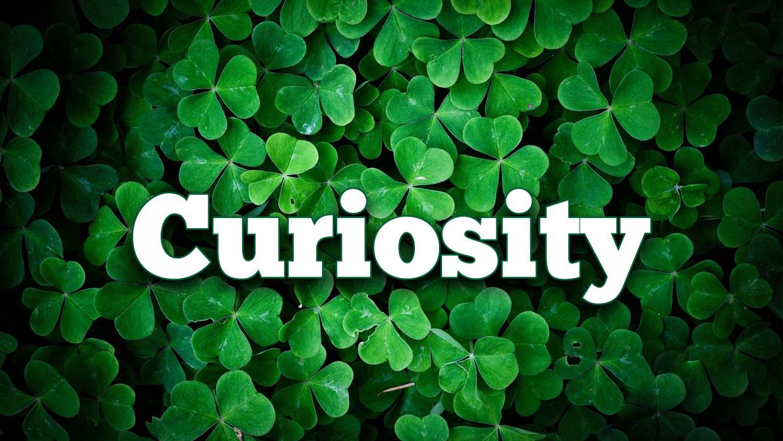 Curiosity – Le mille curiosità