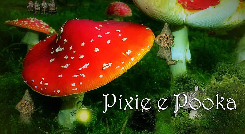 Pixie-e-Pooka