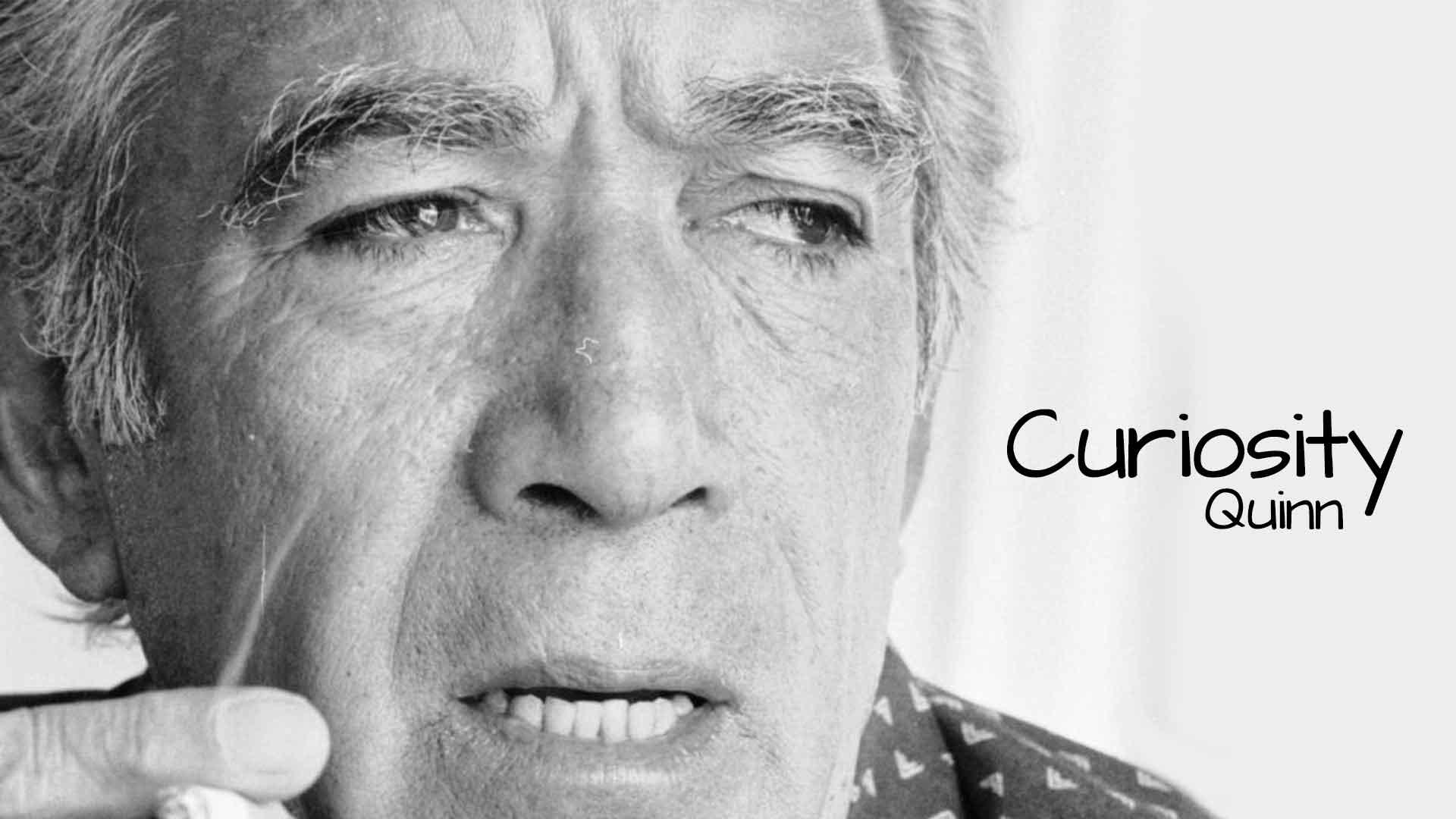 Curiosity – Quinn