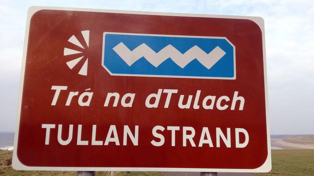 la lingua gaelica