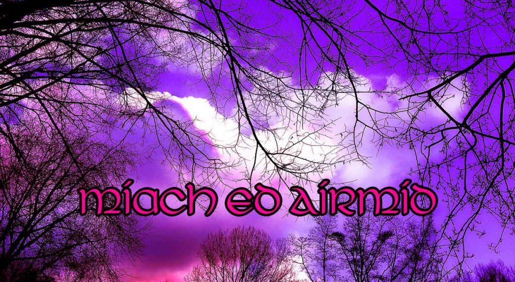 Miach ed Airmid