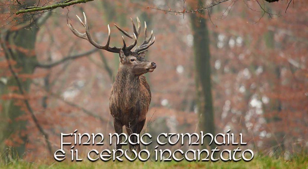 Finn-Mac-Cumhaill-e-il-cervo-incantato