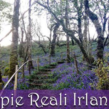 Coppie-reali-irlandesi