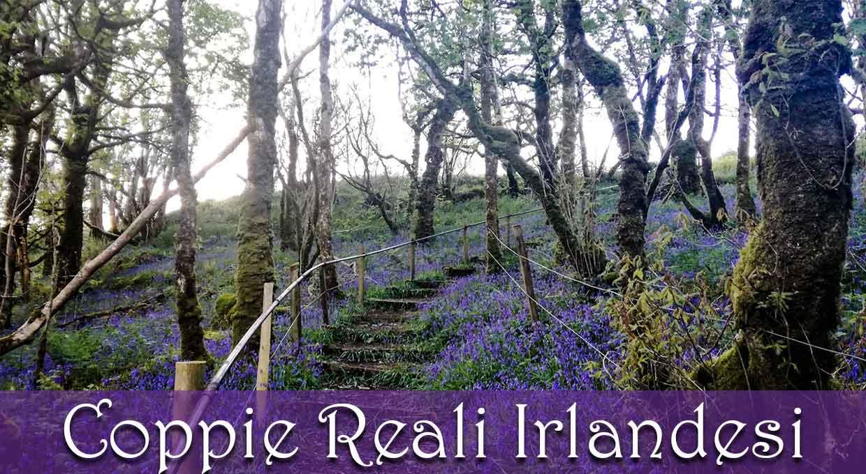 Coppie Reali Irlandesi