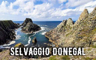 Selvaggio Donegal