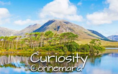 Curiosity – Connemara